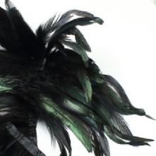 Bronze Black Full Coque Feathers